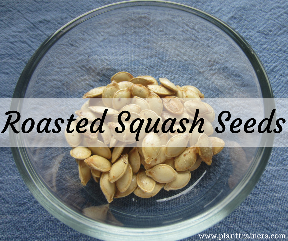 how to eat roasted squash seeds