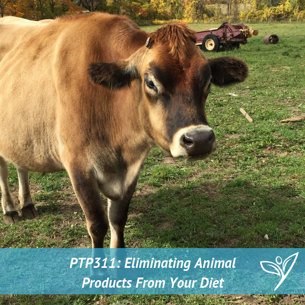 5 Tips For Eliminating Animal Products From Your Diet – PTP311