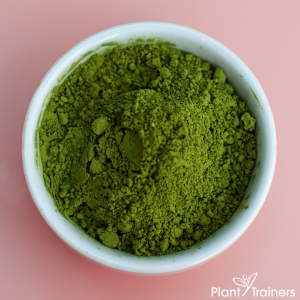 Scary Truth About Superfood Powders