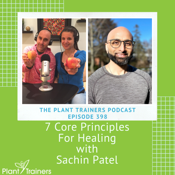 7 Core Principles For Healing with Sachin Patel  – PTP398